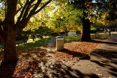 Chair in Park Autumn season Stock Photography