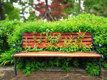 Chair in park Stock Photos