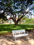 A chair in the park. White chair in a green park with trees Stock Photo