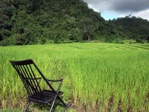 Chair relax rice field Stock Image