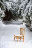 Chair in the snow royalty free stock photo