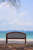 The chair with tree by the ocean. Royalty Free Stock Photo