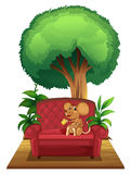 A chair under the tree with a mouse Stock Photos