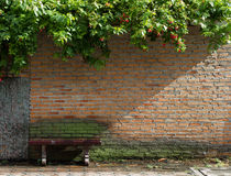 Chair and wall. Single chair under trees with old brick wall and sunlight Royalty Free Stock Photos