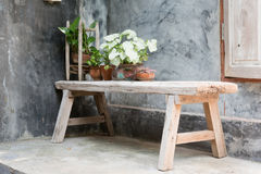 Chair. Wooden bench with decorative plant on concrete wall background Stock Photo