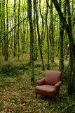 Chair in the woods Stock Image