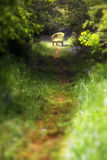 Chair on a path. Lone chair sitting on a path in the woods Royalty Free Stock Photos