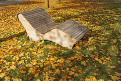 Chair yellow leaves autumn Stock Image