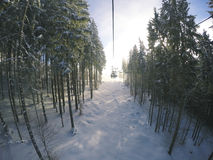 Chairlift in forest Stock Photography