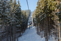 Chairlift in the forest. Royalty Free Stock Photography