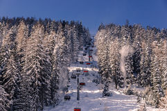 Chairlift. A chairlift in a wintersports resort inbetween snowy trees Royalty Free Stock Image