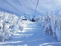 Chairlifts και ίχνη στο χιονοδρομικό κέντρο στοκ φωτογραφία