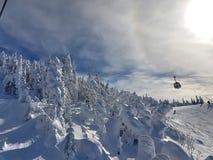 Chairlifts και ίχνη στο χιονοδρομικό κέντρο στοκ εικόνες