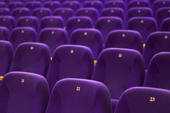 Chairs. Rows of chairs in the theater. Empty auditorium Royalty Free Stock Photography