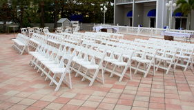 Chairs. Lined up ready for a wedding Royalty Free Stock Images