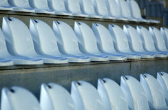 Chairs for the audience in the stadium Stock Image