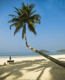 Tropical beach of Palolem, Goa, India Royalty Free Stock Photo