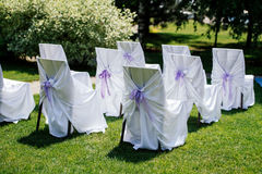 Chairs for the ceremony. With white satin cape and purple ribbon on a green grass Stock Images