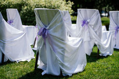 Chairs for the ceremony with white satin cape. And purple ribbon on a green grass Stock Image