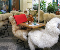 Chairs covered with fur skins, Prague Royalty Free Stock Image