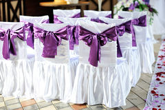 Chairs are decorated with purple bows Stock Image