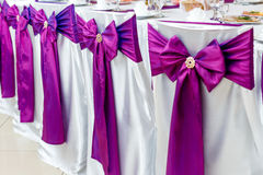Chairs decorated with purple bows on ceremony Royalty Free Stock Image