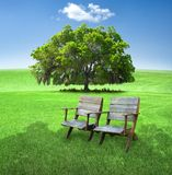 Chairs in field. Two wooden chairs in a grassy field on a hot summer day in the shadow of a tree outside of the frame.  One lone cloud in the blue sky and a Royalty Free Stock Image