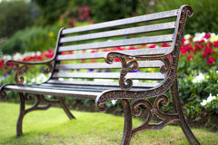 Chairs in flower garden. Background Royalty Free Stock Images