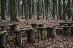 Chairs in the forest Stock Images