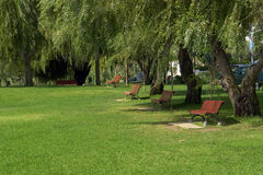 Chairs in the garden. Public gardens with chairs for relax Royalty Free Stock Photography