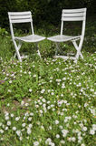 Chairs in garden Royalty Free Stock Photos