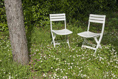 Chairs in garden Royalty Free Stock Photography