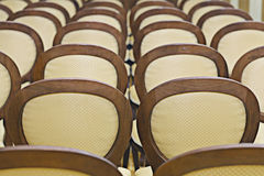 Chairs in the hall. Backs of the stock images