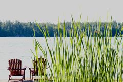 Chairs looking over beautiful lake view with tall grass royalty free stock photography