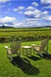 Chairs overlooking vineyard stock photos