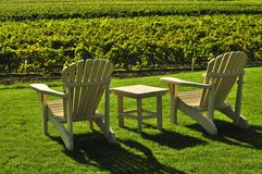 Chairs overlooking vineyard stock photo