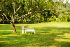 Chairs in the park Stock Image