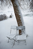 Chairs in snow. Chairs under a Tree in the snow Royalty Free Stock Photography