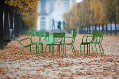 Chairs in the Tuileries. Chairs standing in a circle in the park Tuileries in Paris Stock Photos