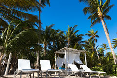 Chairs and umbrella on a beach with shadow from palm tree Royalty Free Stock Photos