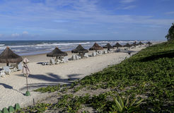 Chairs and umbrellas on tropical beach. PORTO SEGURO, BA, BRAZIL - AUGUST 14, 2016 - Chairs and umbrellas on Brazilian tropical beach Stock Photography