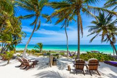 Chairs under the palm trees on paradise beach at tropical Resort. Riviera Maya - Caribbean coast at Tulum in Quintana Roo, Mexico royalty free stock image