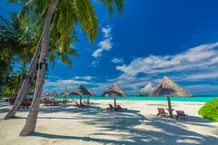 Chairs under umrellas and palm trees on a tropical beach, Maldiv Stock Photo