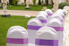 Chairs with Violet Ribbons Royalty Free Stock Photo