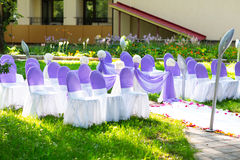 Chairs at a wedding ceremony. Decor.  Royalty Free Stock Photography