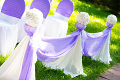 Chairs at a wedding ceremony. Decor. Chairs at a wedding ceremony. Decor Royalty Free Stock Image