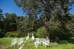 Chairs on wedding ceremony. Summer stock photography
