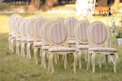 Chairs in Yard Royalty Free Stock Photography