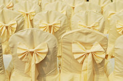 Chairs with yellow cloth cover Royalty Free Stock Photography