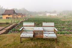 Chaise dans les fermes Photos stock